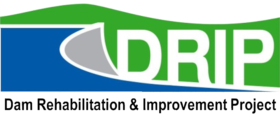 What is the Dam Rehabilitation and Improvement Project (DRIP)
