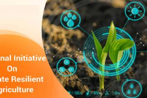 What is the National Initiative on Climate Resilient Agriculture