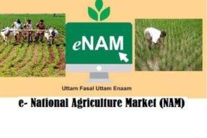 National Agriculture Market (NAM)