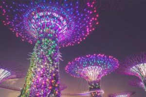 Singapore eyes 14% growth in tourists from India